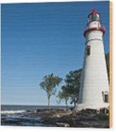 Marblehead Lighthouse Wood Print