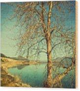 March 24 2010 Wood Print
