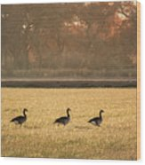 March Of The Geese Wood Print