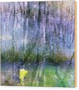 March Pond Wood Print