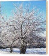 March Tree Wood Print