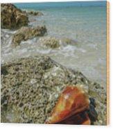 Marco Island South Beach Wood Print