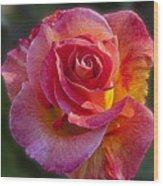 Mardi Gras Rose Wood Print