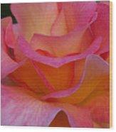 Mardi Gras Rose Macro Wood Print