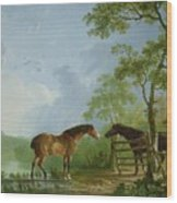 Mare And Stallion In A Landscape Wood Print