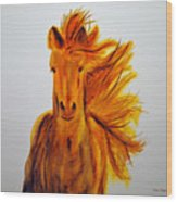 Mare In Motion Wood Print