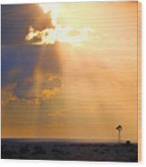 Marfa Windmill 1 Wood Print