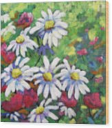 Marguerites 001 Wood Print