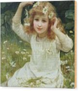 Marguerites Wood Print by Frederick Morgan