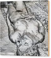 Nude Maria On Animal Sheets Wood Print