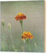 Marigold Fancy Wood Print