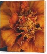 Marigold On Blue Wood Print