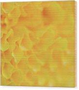 Marigold Texture Wood Print