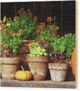 Marigolds And Pumpkins Wood Print