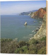 Marin Headlands 1 Wood Print