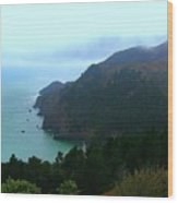 Marin Headlands In San Francisco California Wood Print