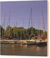 Marina At Lake Murray S C Wood Print