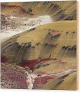 Marked Hills Wood Print
