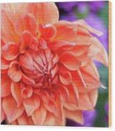 Market Flowers  Wood Print