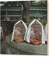 Market Vendor Selling Caged Birds Wood Print by Sami Sarkis
