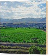 Marlborough Wine Country Wood Print