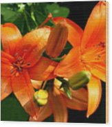 Marmalade Lilies Wood Print by David Dunham