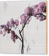 Marning Orchids Wood Print