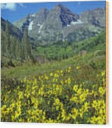 210403-v-maroon Bells And Sunflowers  Wood Print