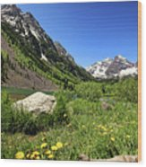Maroon Bells In Summer 2 Wood Print
