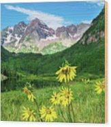 Maroon Sunflowers Wood Print