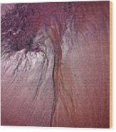 Marooned Wood Print