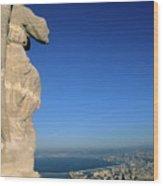 Marseille Seen From The Basilica Of Notre Dame De La Garde Wood Print