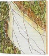 Marsh 2 Wood Print