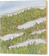 Marsh 8 Wood Print