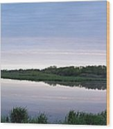 Marsh Calm Wood Print
