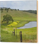 Marsh Creek Road Wood Print