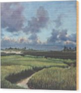 Marsh Dawn Wood Print