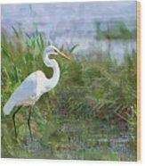 Marsh Egret Wood Print