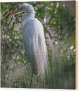 Marsh Heron Wood Print