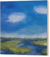 Marsh In The Low Country Wood Print
