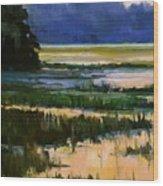 Marsh Jazz Wood Print