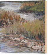 Marsh Reflections Wood Print