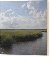 Marsh Scene Charleston Sc II Wood Print
