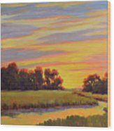 Marsh Sunrise Wood Print