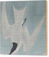 Marsh Tern Wood Print