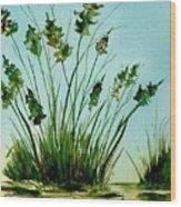 Marsh Weeds Wood Print
