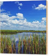 Marsh Lands Wood Print