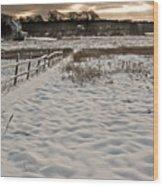 Marshland Cape Elizabeth Maine Wood Print