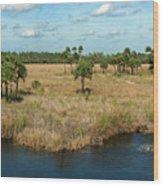 Marshland Wood Print