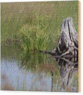 Marshland Reflections II Wood Print